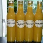 Tropicana - med etiketter