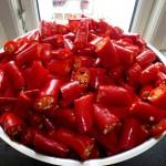 Chilisauce - chili i stykker