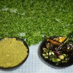 Ramsløgssalt med grøn chili 2