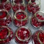 Syltede rødbeder med chili og nelliker - første lag rødbeder i glassene